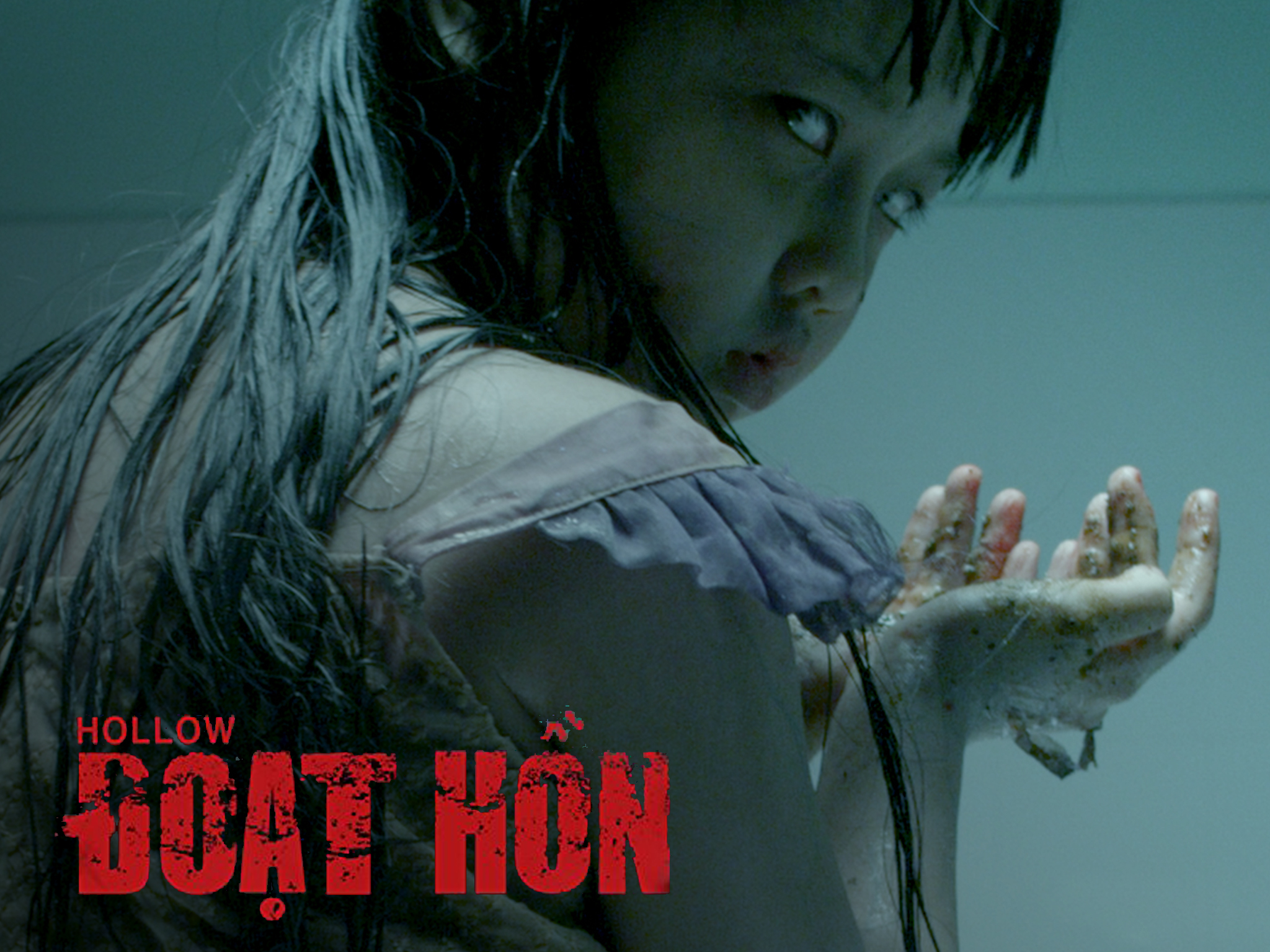 A family is terrorized by their dead daughter, Ai, who has come back to life possessed by a vengeful spirit. Directed by Ham Tran.