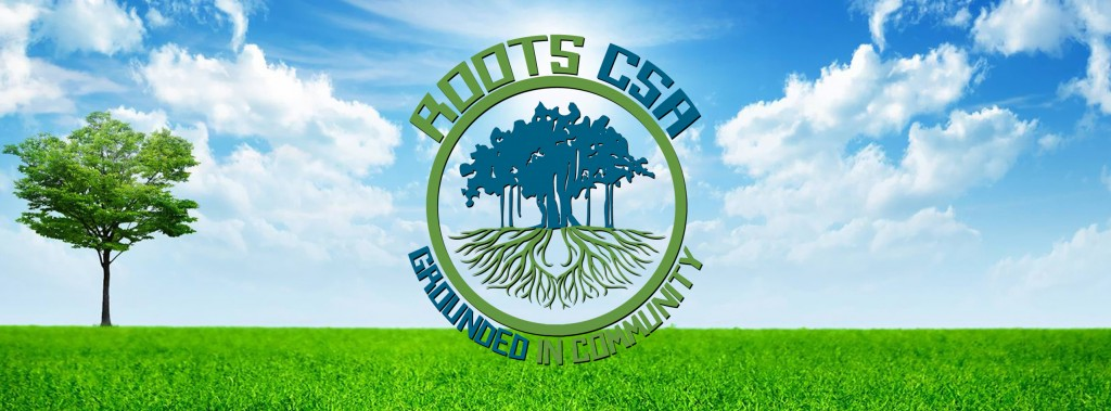Roots CSA Banner